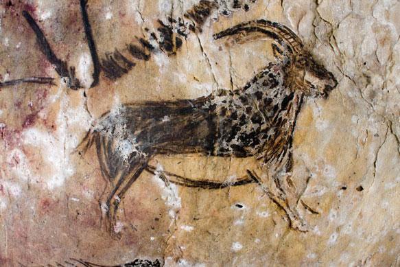 Gravure de bouquetin datant de la préhistoire dans la grotte de Niaux
