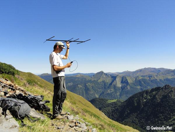 Agent du Parc naturel régional qui detecte à l'aide d'une antenne les colliers émettant une fréquence radio